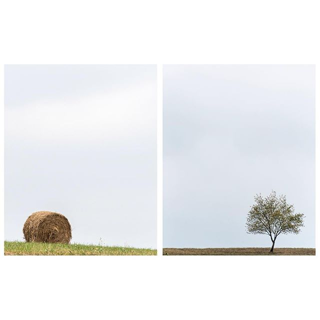 Lonely Things in Fields (Hay Bale and Tree) Pennsylvania 2015