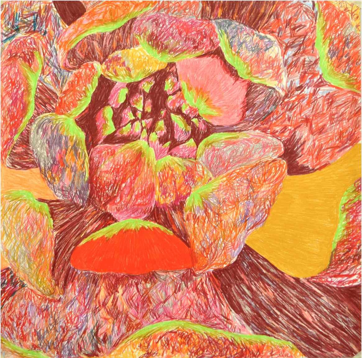 Stamen , 2010 crayons on paper 75 x 75 cm