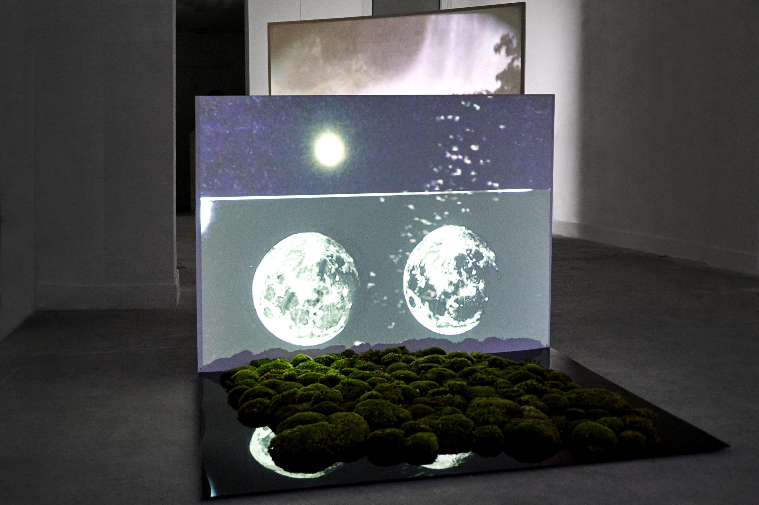 Nouveau Monde II ,2015 video, natural moss,wood, black mirror 120 x 100 x 88 cm   photo by Claire Désérable