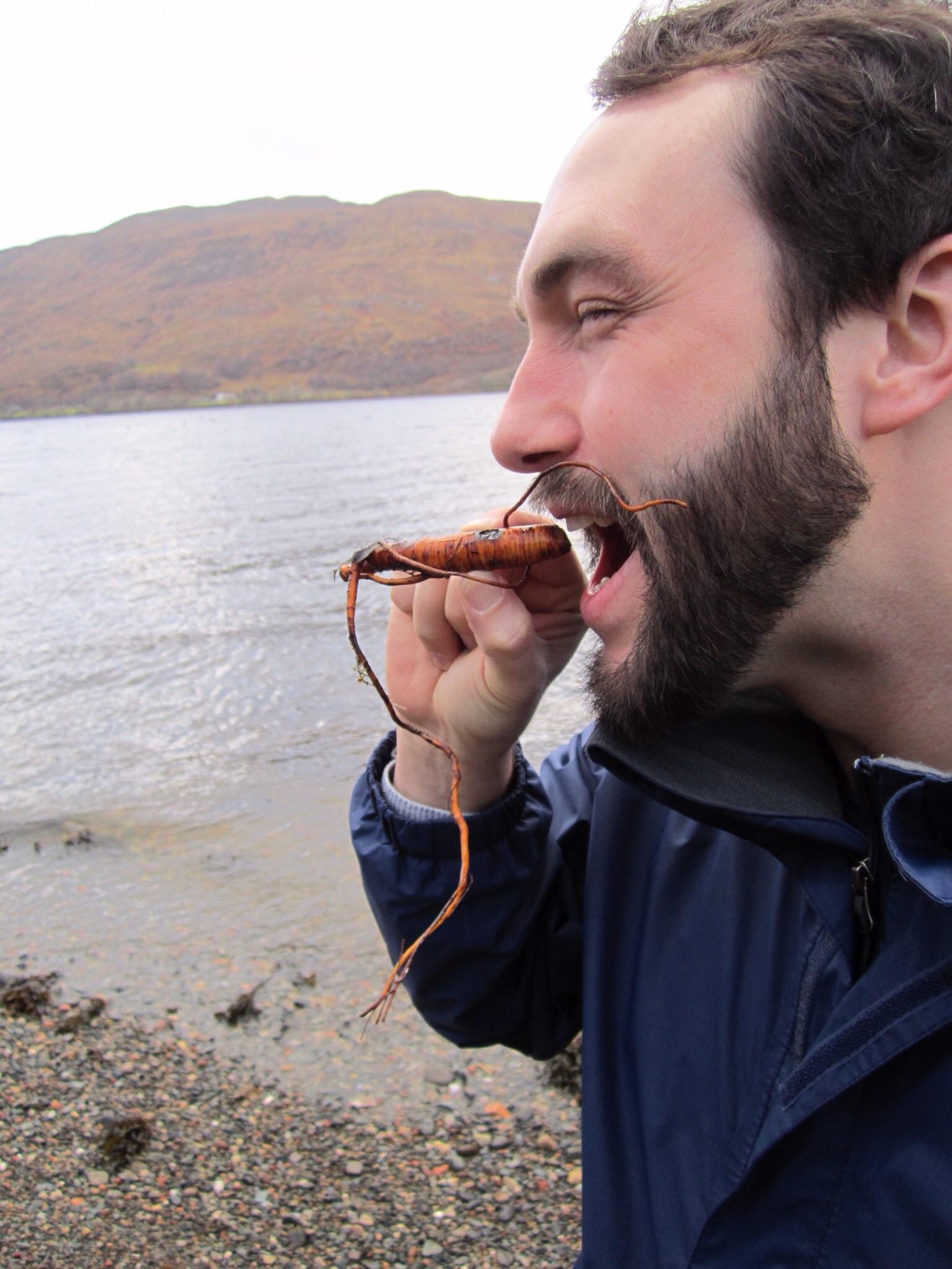 Sea carrot!