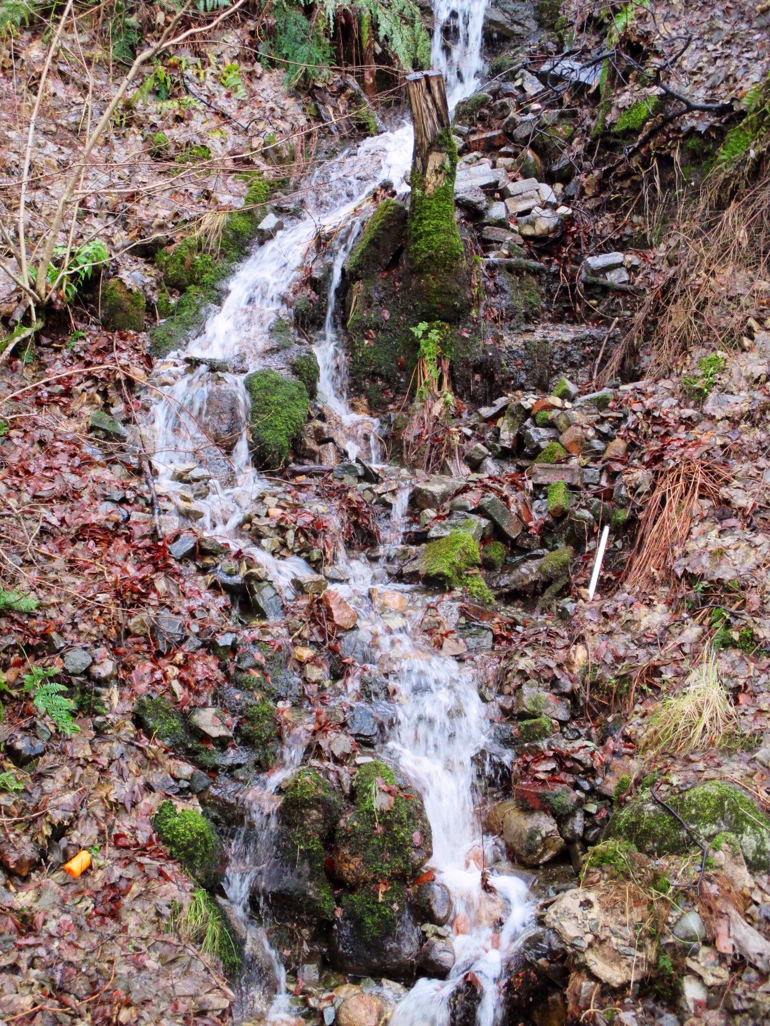 Waterfall, Ft William, Scotland