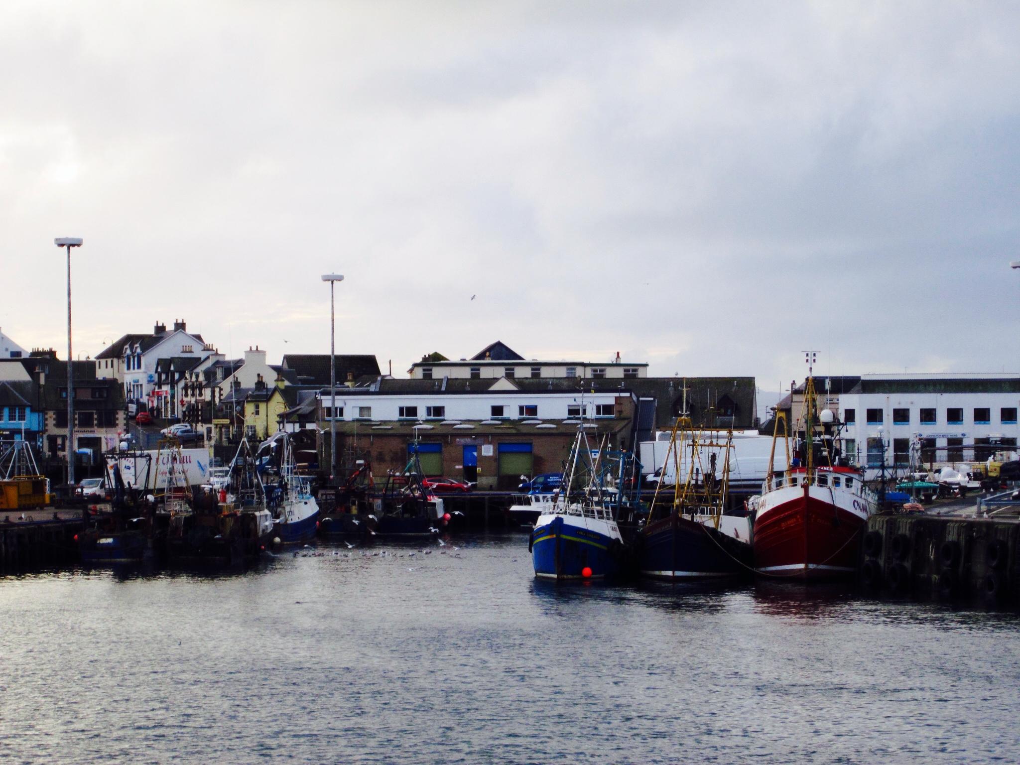 Port of Mallaig