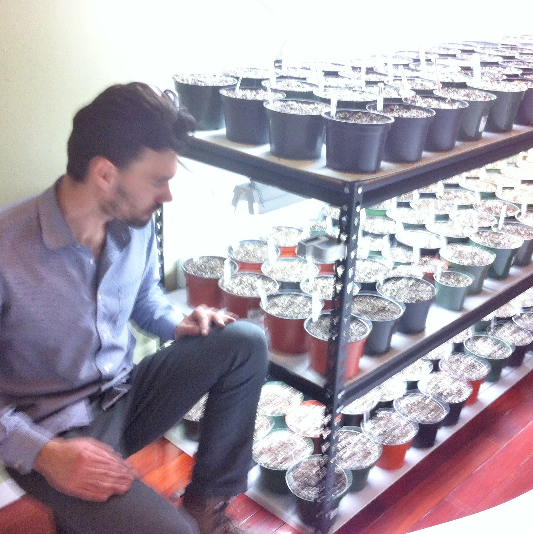 Sam of the  Urban Landscape Company  and his expertly devised indoor seed starting installation!