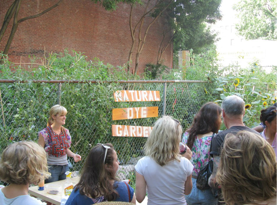 Teaching a workshop in the  Textile Arts Center Sewing Seeds CSA Dye Garden  in 2012