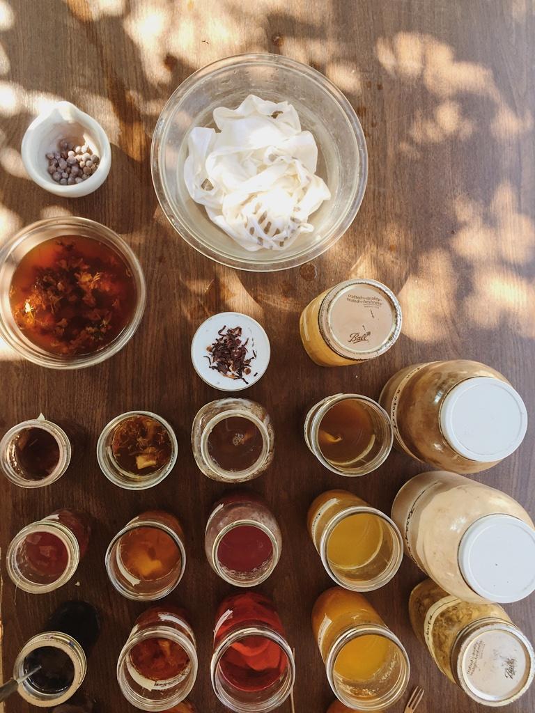 medicinal dyes