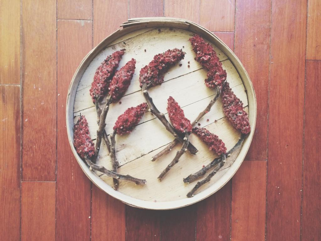 sumac berries