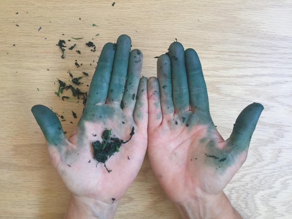 fresh indigo stained hands