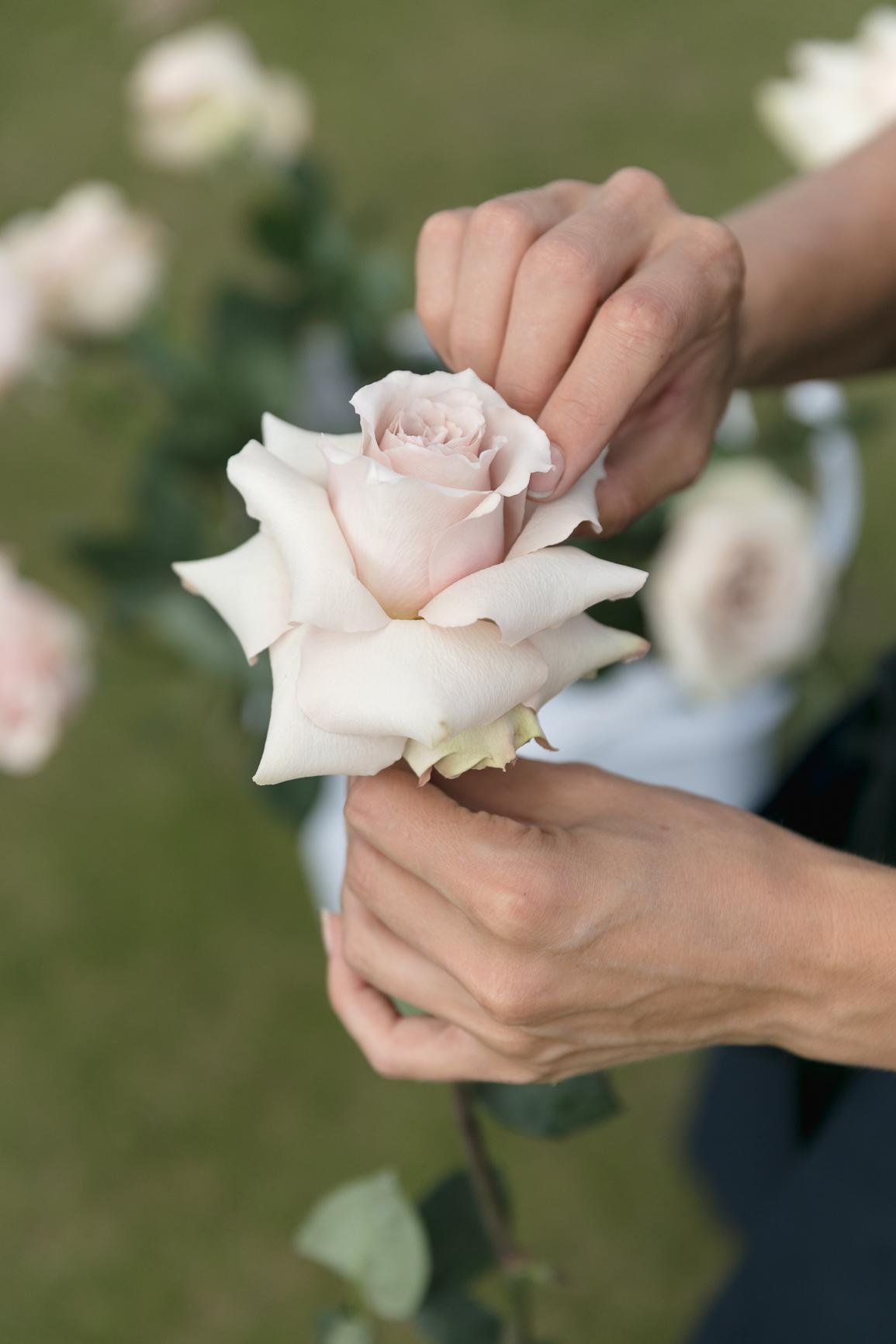 ©MichelleWeir-Blush-TaraIti-Wedding-72dpi-024.jpg