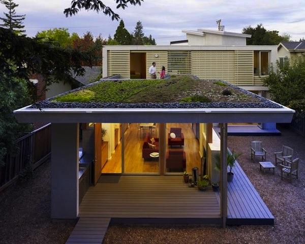 modern green roof house.jpg