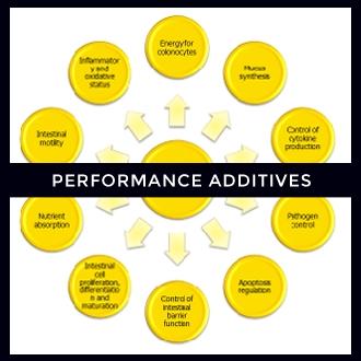 Performance Additives.jpg