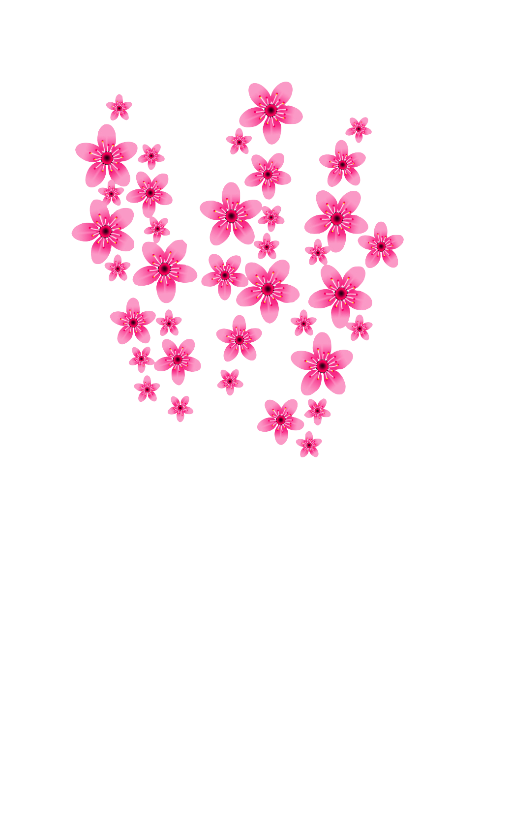 Cherry Blossoms - No Background.png