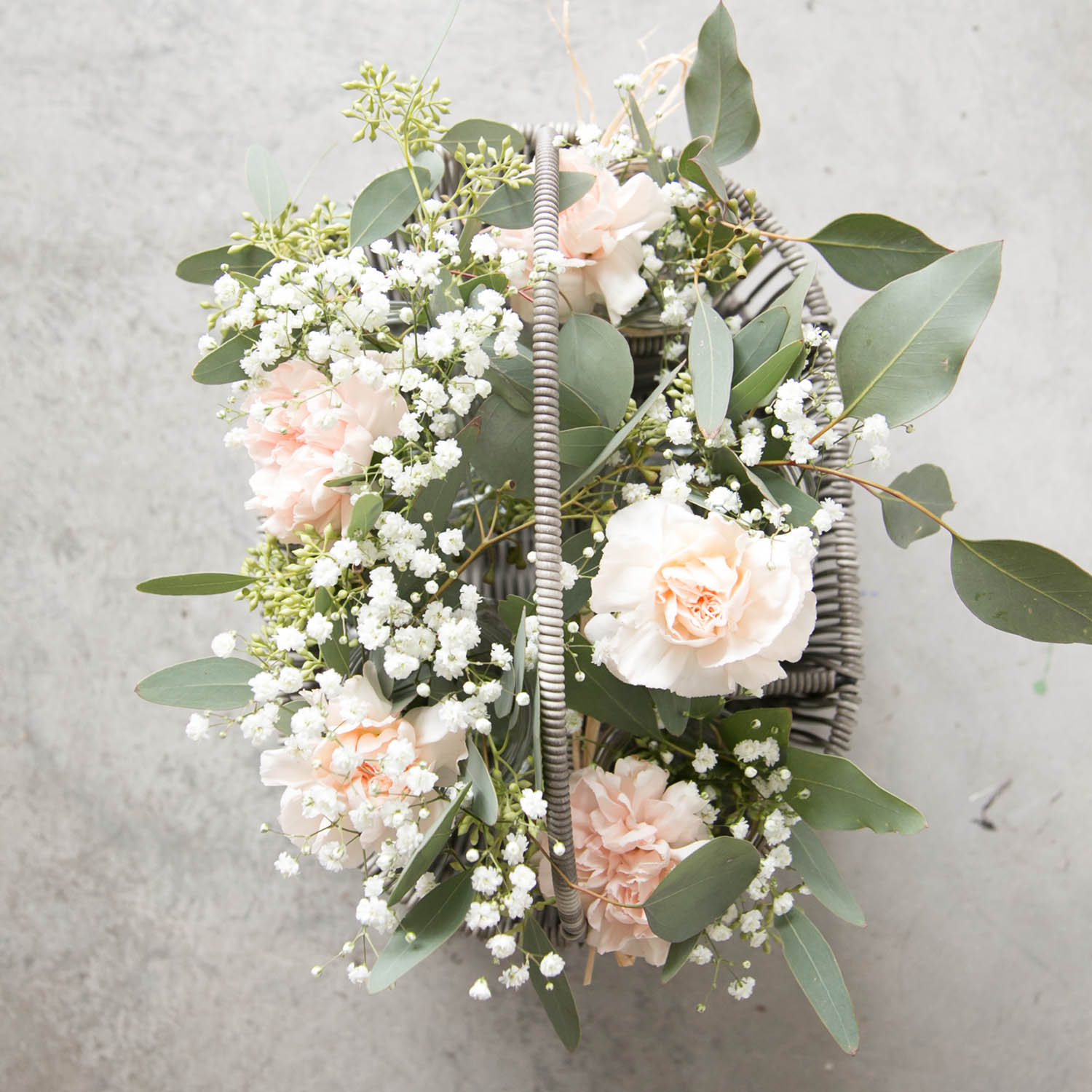 blush carnations, baby's breath and eucalyptus