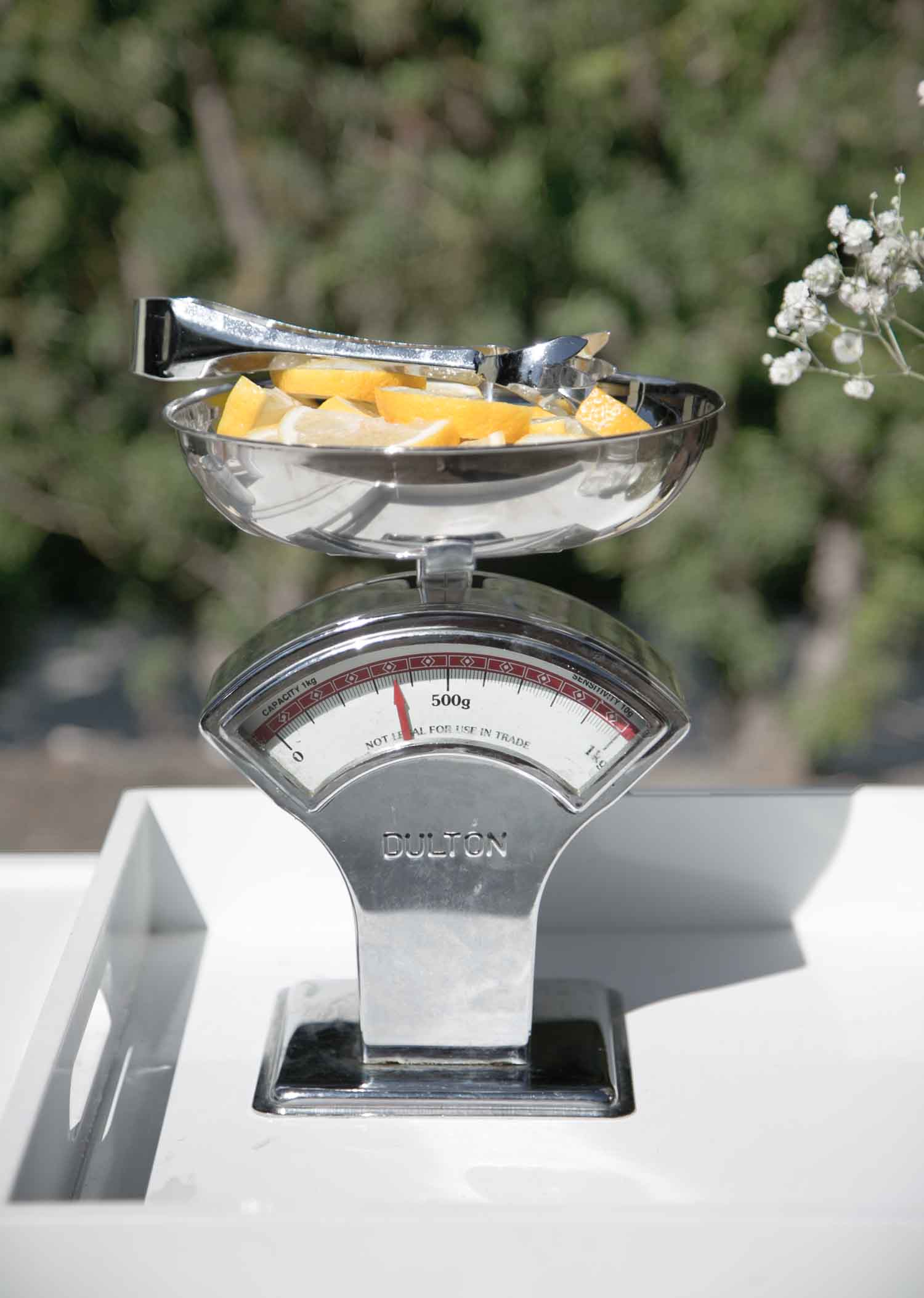 dulton kitchen scale