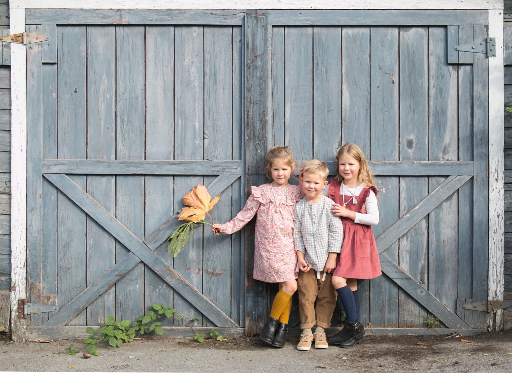 kids barn door
