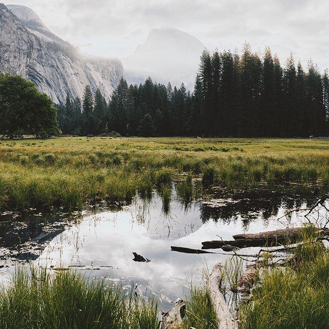 Sunrise in Yosemite #yosemite #yosemitenationalpark