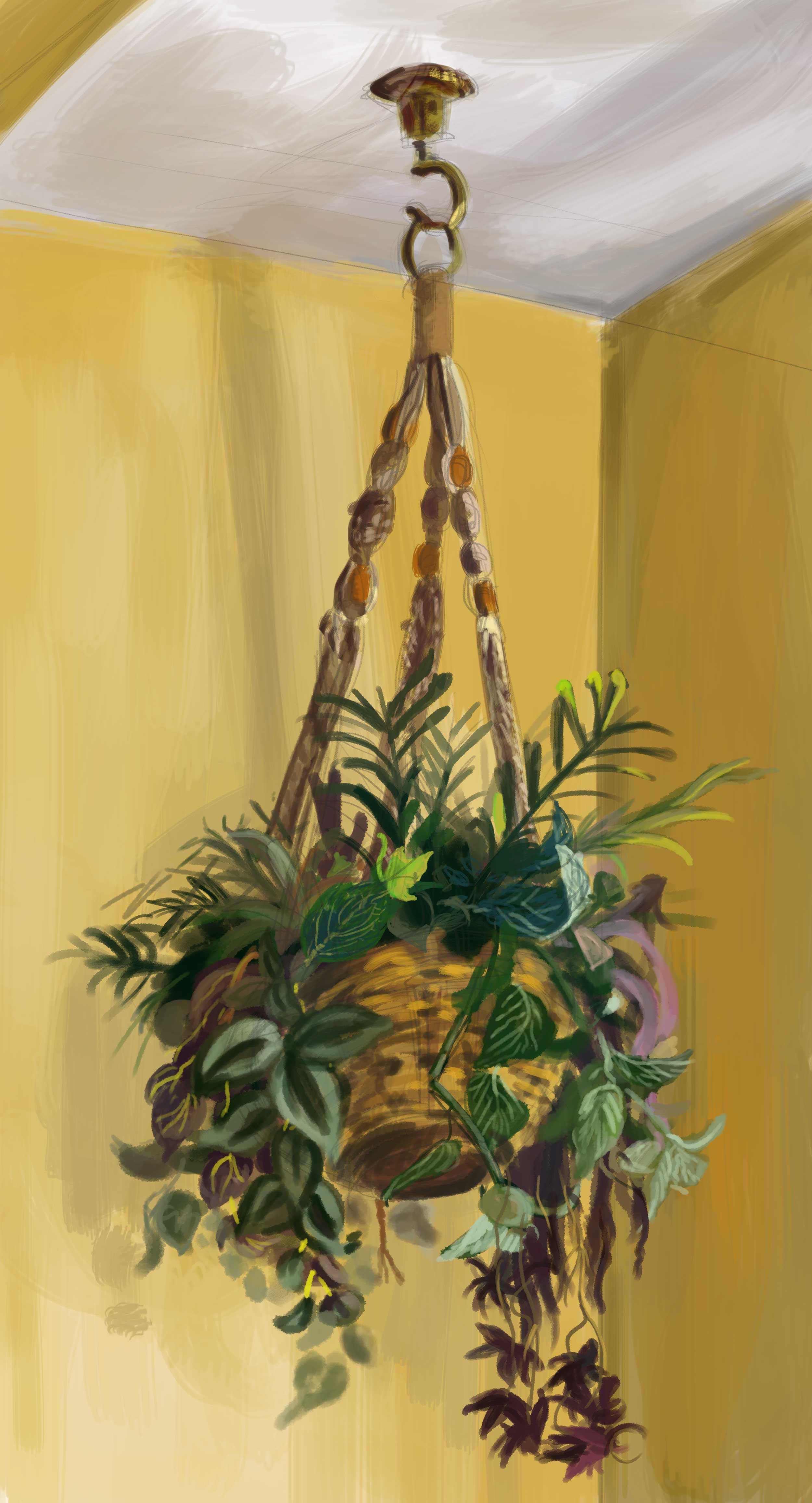 A study of a hanging plant. I think it took around 50 minutes