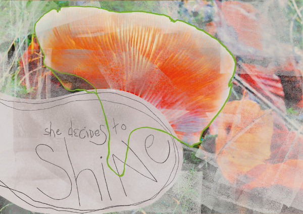 She Decides to Shine (2014), mixed media on paper, 50 x 70 cm.  Our local forest is scattered with beautiful mushrooms and fungi. This lovely was literally glowing, not to be missed.