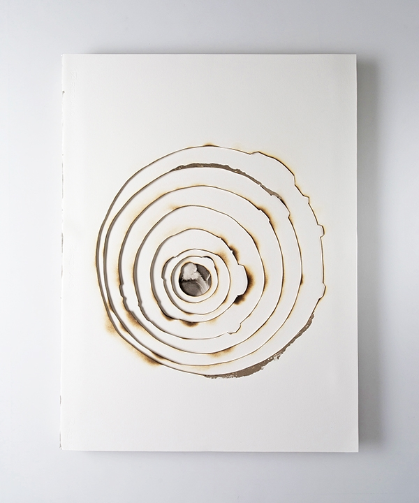 Kelly M. O'Brien, Playing With Fire No. 75. Paper, gold leaf, ink, flame. 32 x 24 x 1.5 inches. ©2018. Commissioned for The Phoenician, Scottsdale, Arizona.