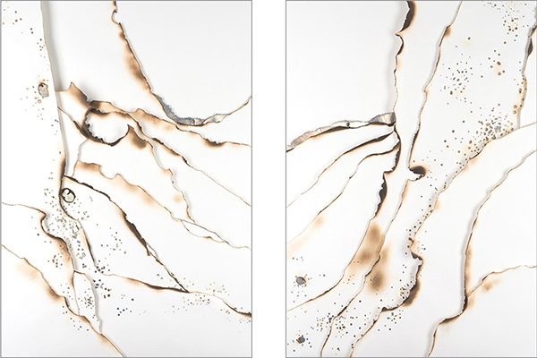 Kelly M. O'Brien, Hand-embellished prints ( Playing With Fire No. 25 and 26 ). Hand-burned digital images on paper with gold leaf. 183x122 cm   72x48 inches each. ©2018.