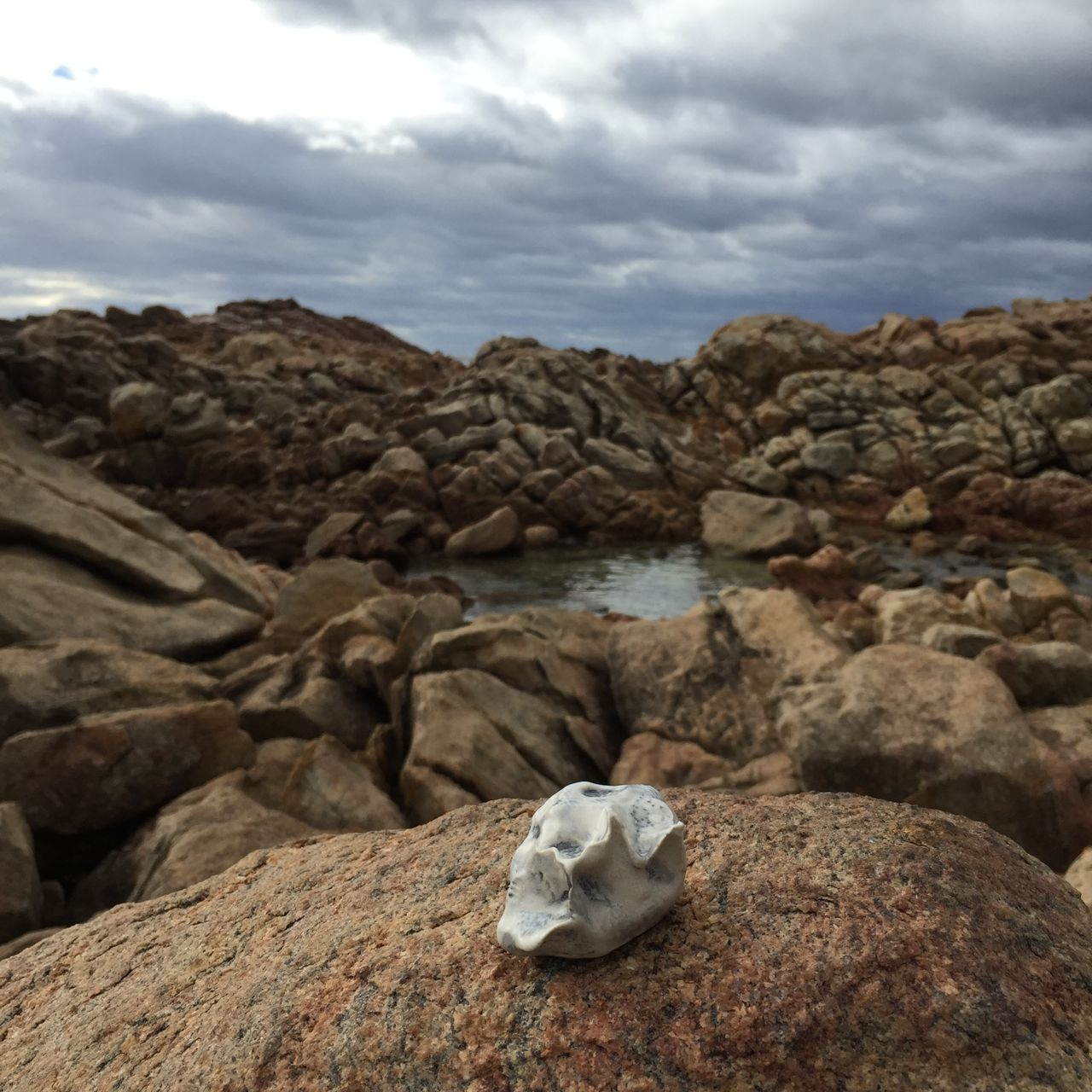 canal rocks . wa . australia 23.03.16