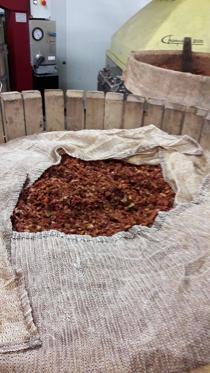 Des pommes Colapuy broyées et laissées pendant une nuit avant d'être pressées pour permettre l'oxydation
