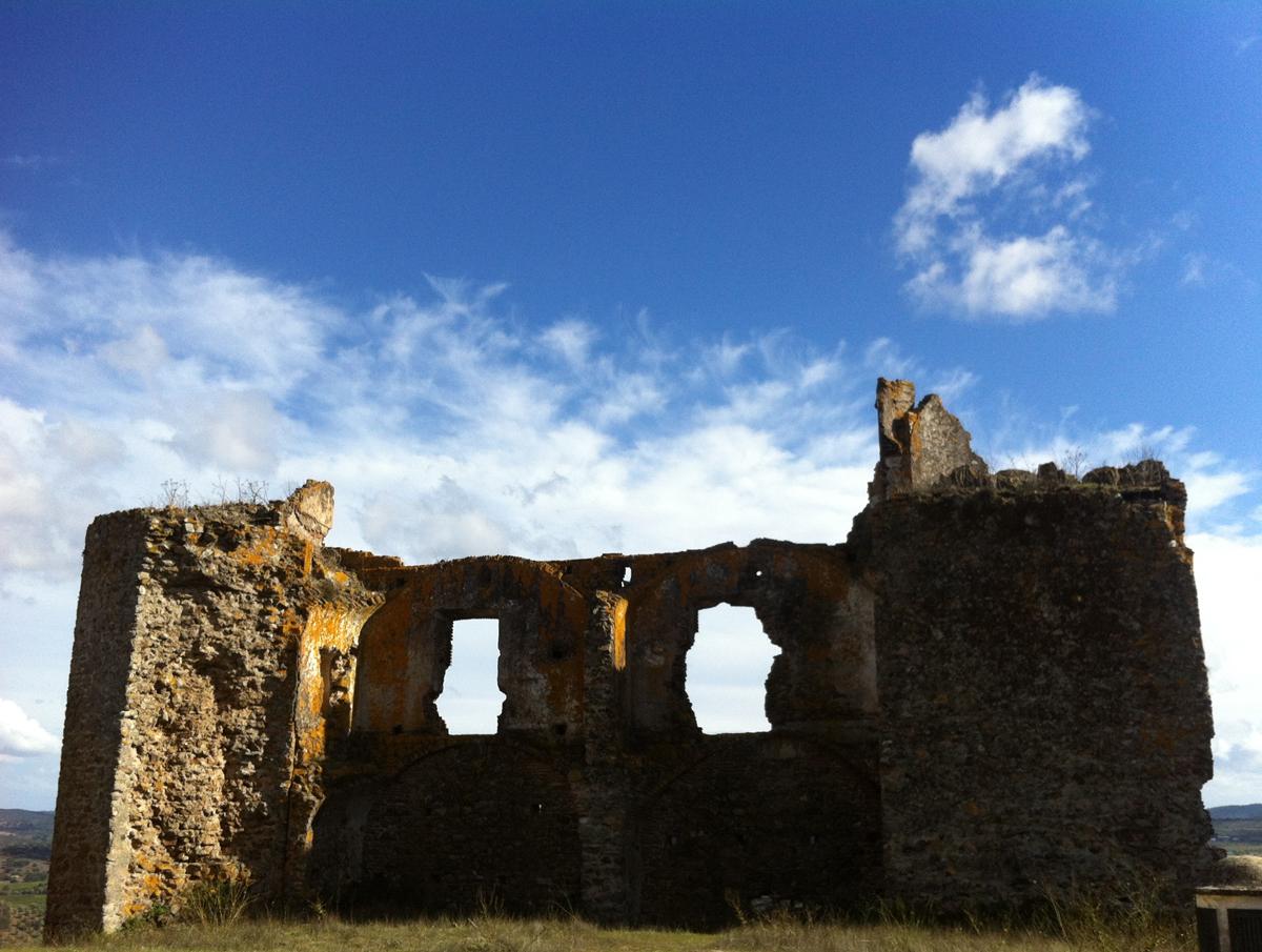 surroundings / looking through history