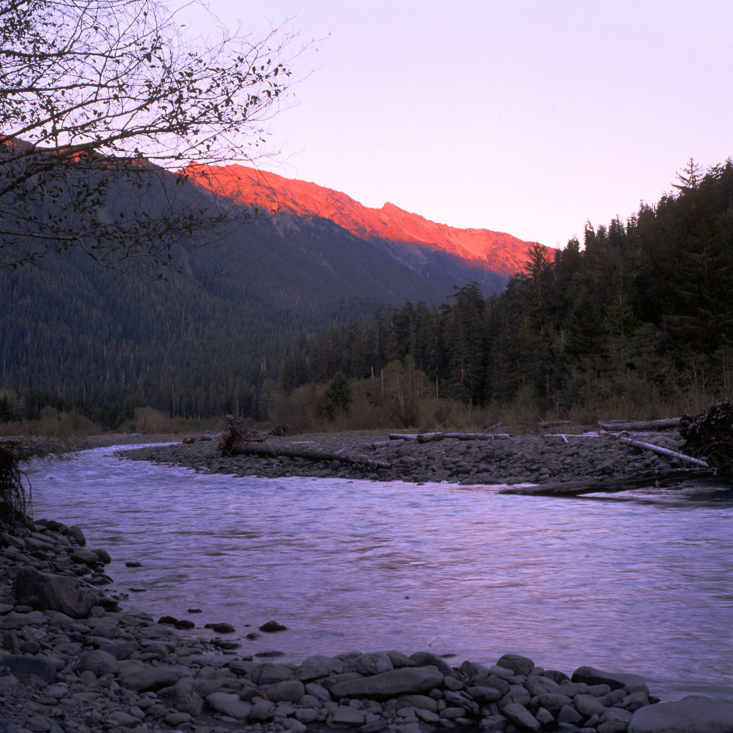 The last bits of daylight shine a pinkish hue on the top of the Hoh River Valley.  This is the view from our campsite at Lewis Meadows