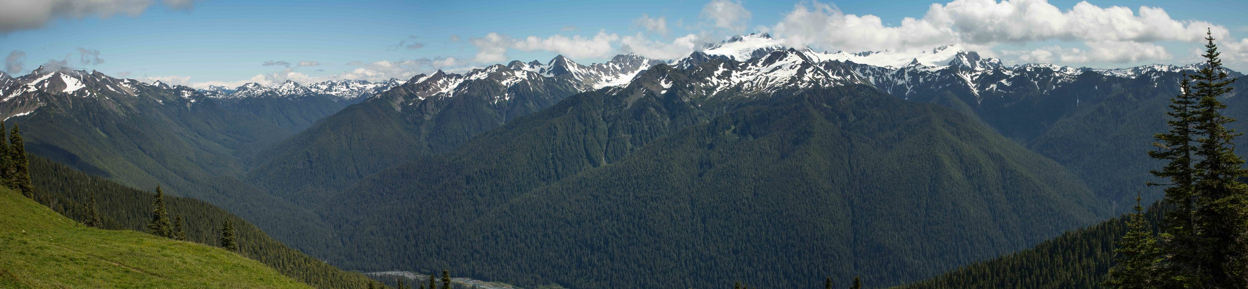 Panoramic view of Mt. Olympus after the fog lifted, near the summit of Bogachiel Peak.