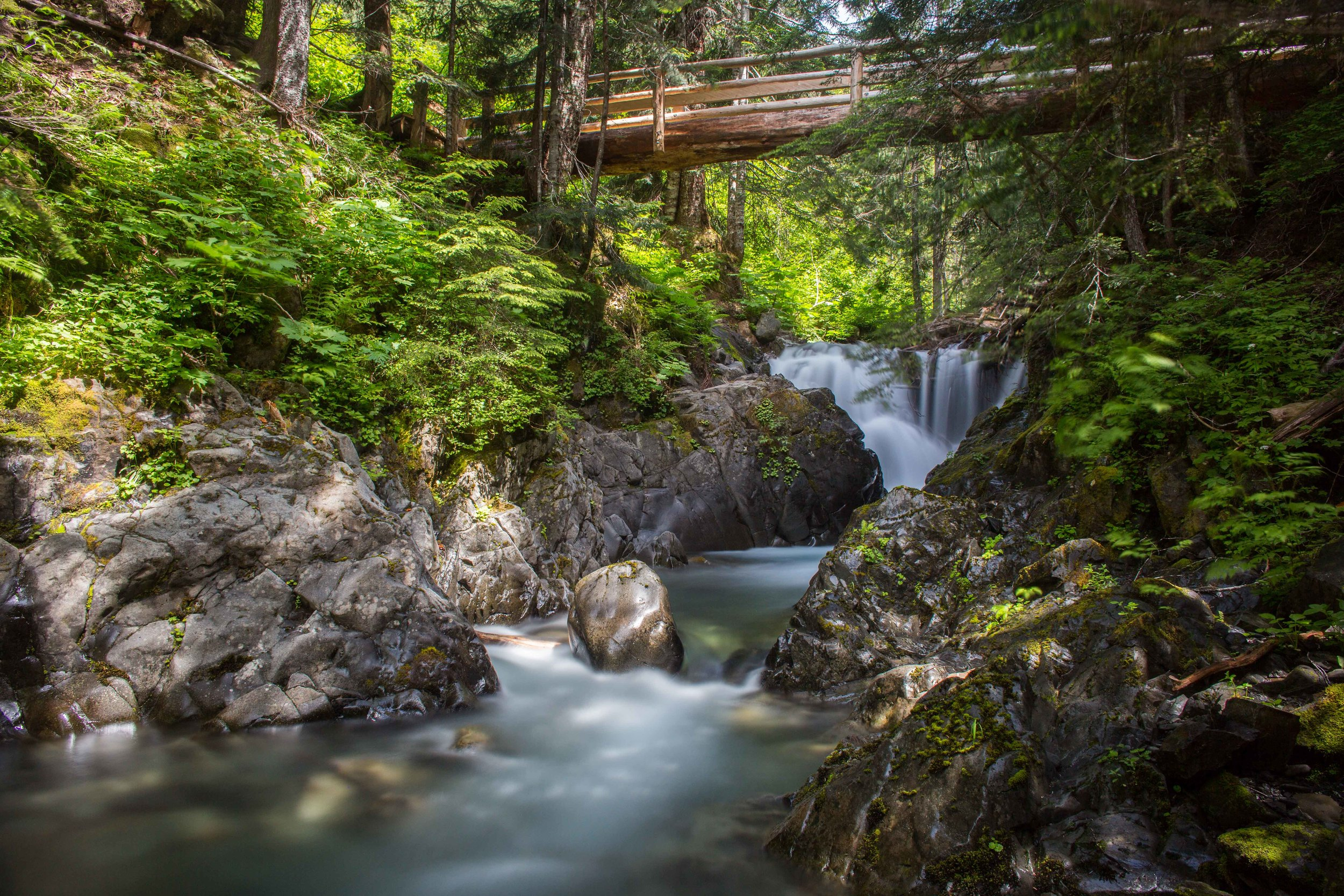 Bridge crossing over a creek