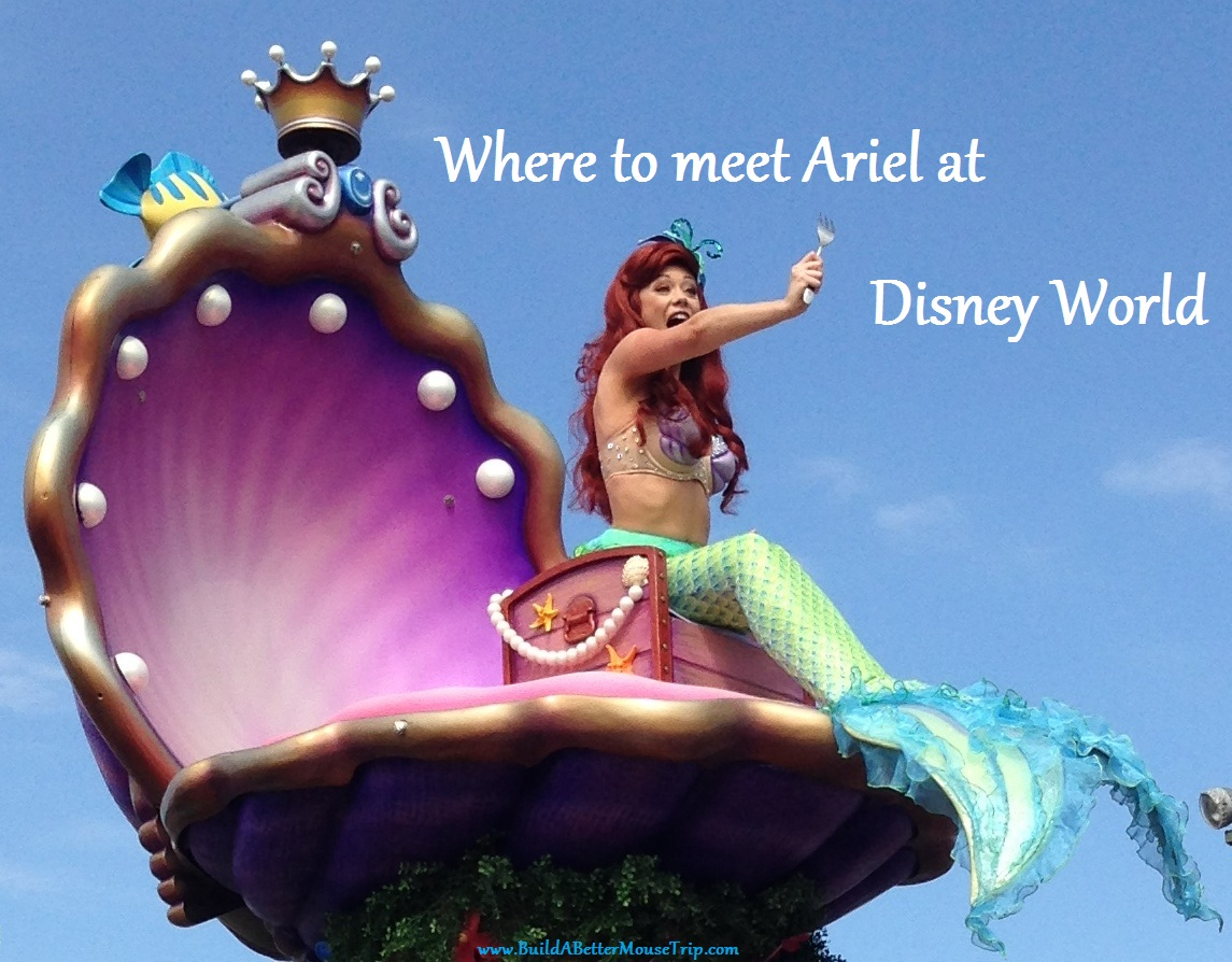 Where to meet & see Ariel (the Little Mermaid) at the Disney World theme parks in Florida.