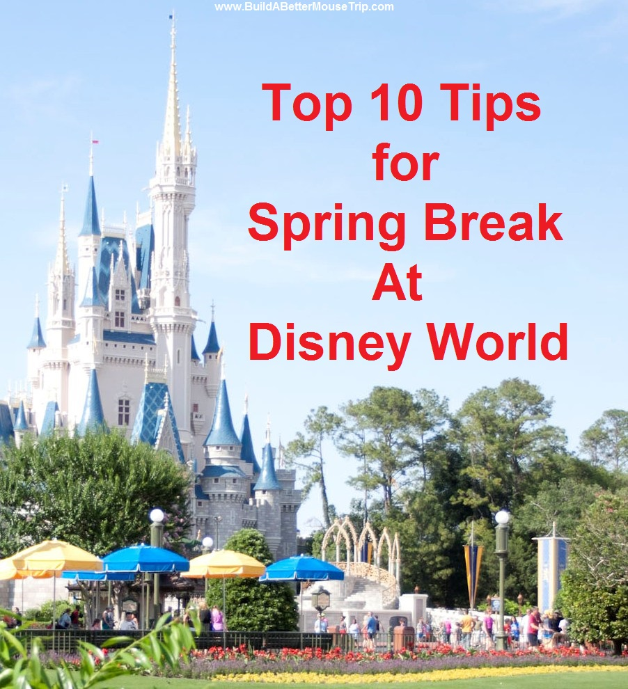 Top 10 Tips for a Better Spring Break Trip to Disney World. See: http://www.buildabettermousetrip.com/disney-world-spring-break-tips