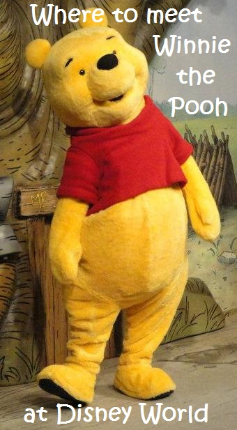 A list of all of the Winnie the Pooh themed attractions, character meals, and activities at Disney World; see: http://www.buildabettermousetrip.com/pooh