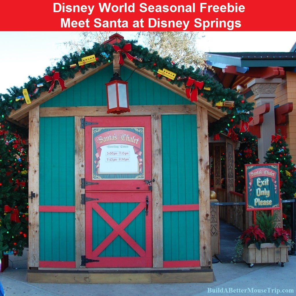 Disney World Tips & Secrets:  Christmas at Disney World - Meet Santa at Disney Springs (formerly Downtown Disney) at the Walt Disney World Resort in Florida.  This is a free experience that occurs November 13 - December 24, 2015 from noon to 10PM daily.
