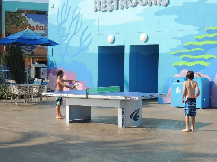 Disney's-Art-of-Animation-Ping-Pong-Table.JPG