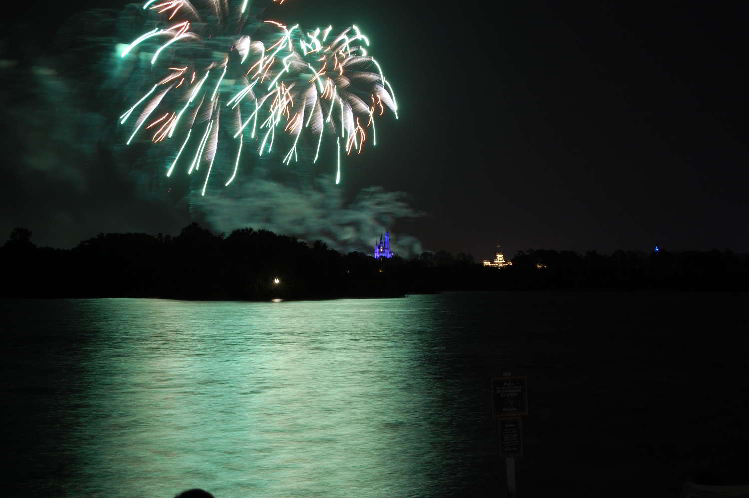 You can view the Magic Kingdom's Wishes fireworks on the Beach of Disney's Polynesian Village Resort.