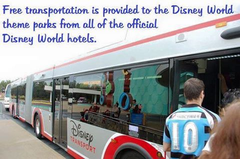 Disney World Transportation Tips - Is the free transportation fine or should we taxi or drive to the Disney World theme parks from our Disney World hotel?