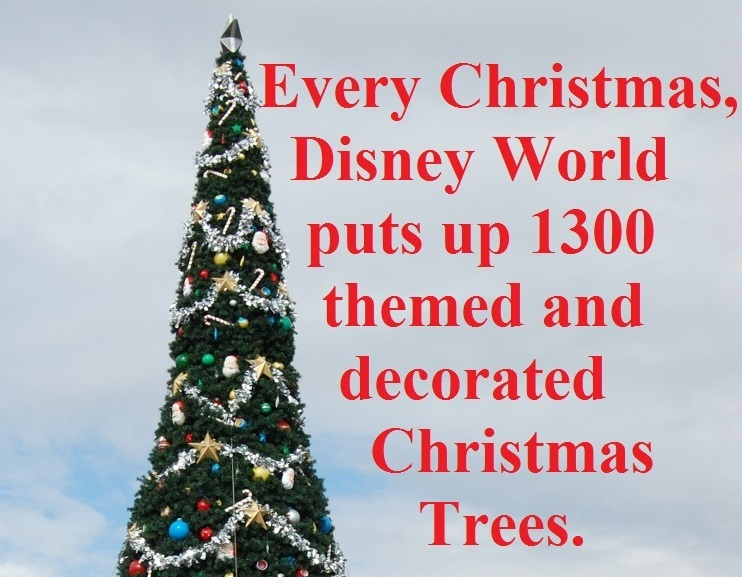 Every Christmas, the Walt Disney World Resort puts up 1300 themed and decorated Christmas trees.