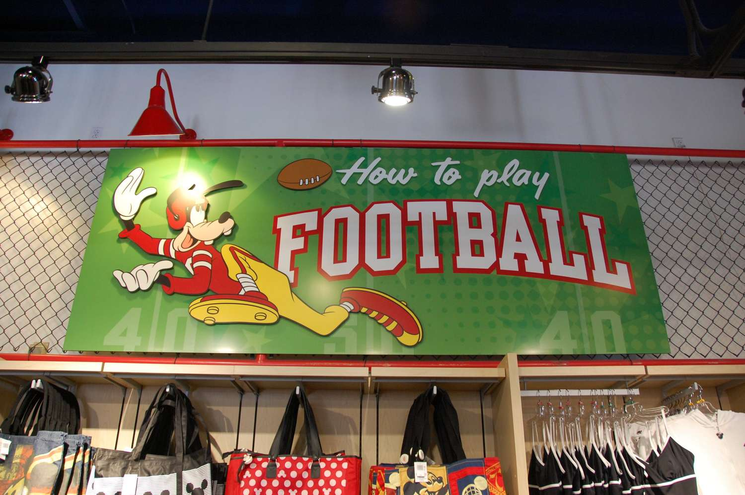 Disney's-All-Star-Sports-Sport-Goofy-Gifts-and-Sundries (3).JPG