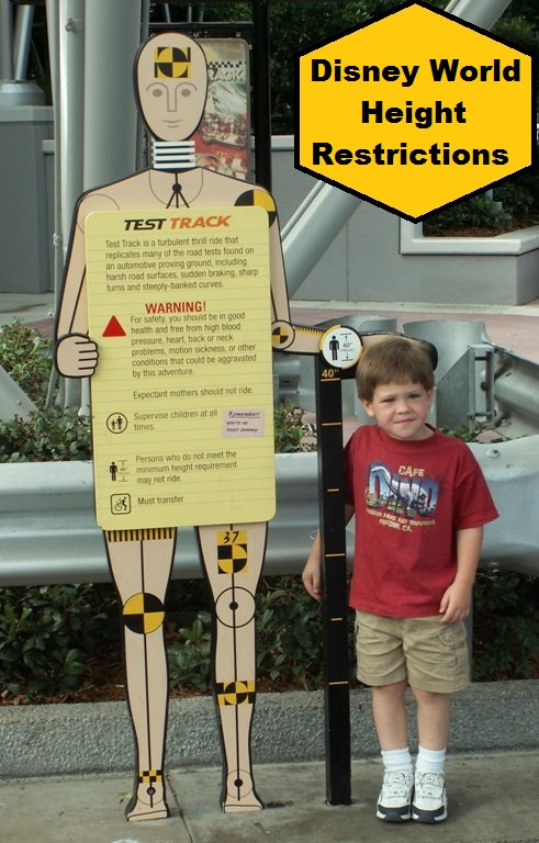A list of Disney World Rides and Attractions with height restrictions.