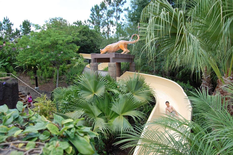 coronado-springs-026-The-Dig-Site-Feature-Pool-Slide.JPG