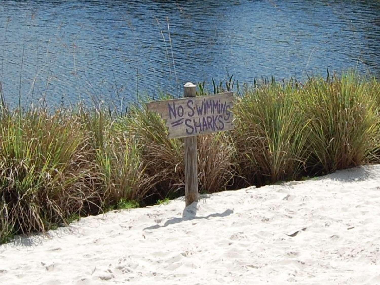coronado-springs-064-No-Swimming-Sharks-Sign.JPG