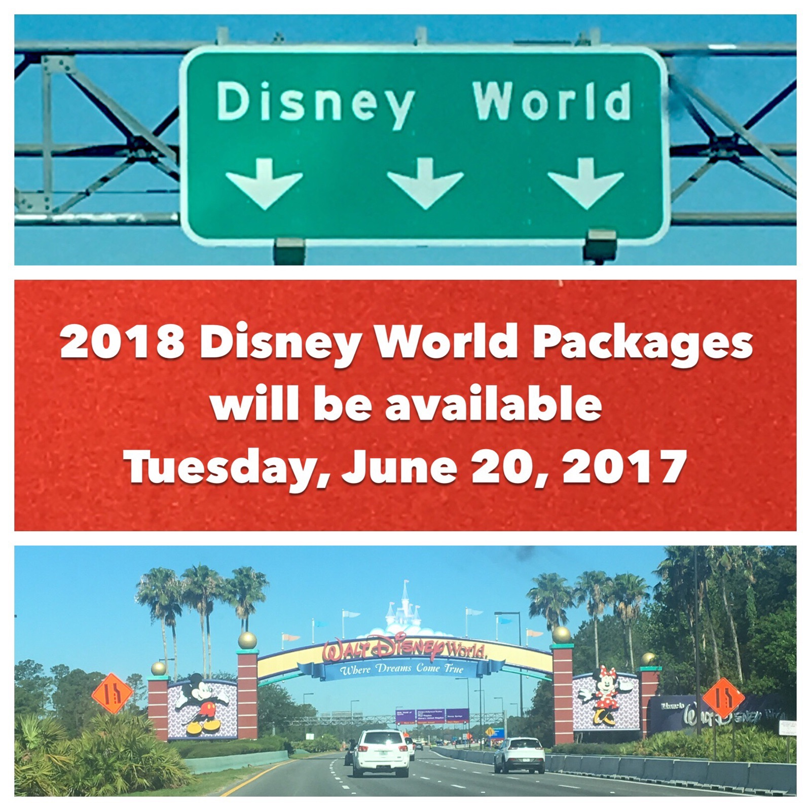 2018 Disney World packages will be available to book beginning Tuesday, January 20, 2017 for up to 499 days into the future.