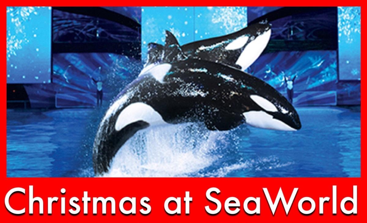 Christmas at SeaWorld Orlando - Holiday shows, dining with Santa, and more!
