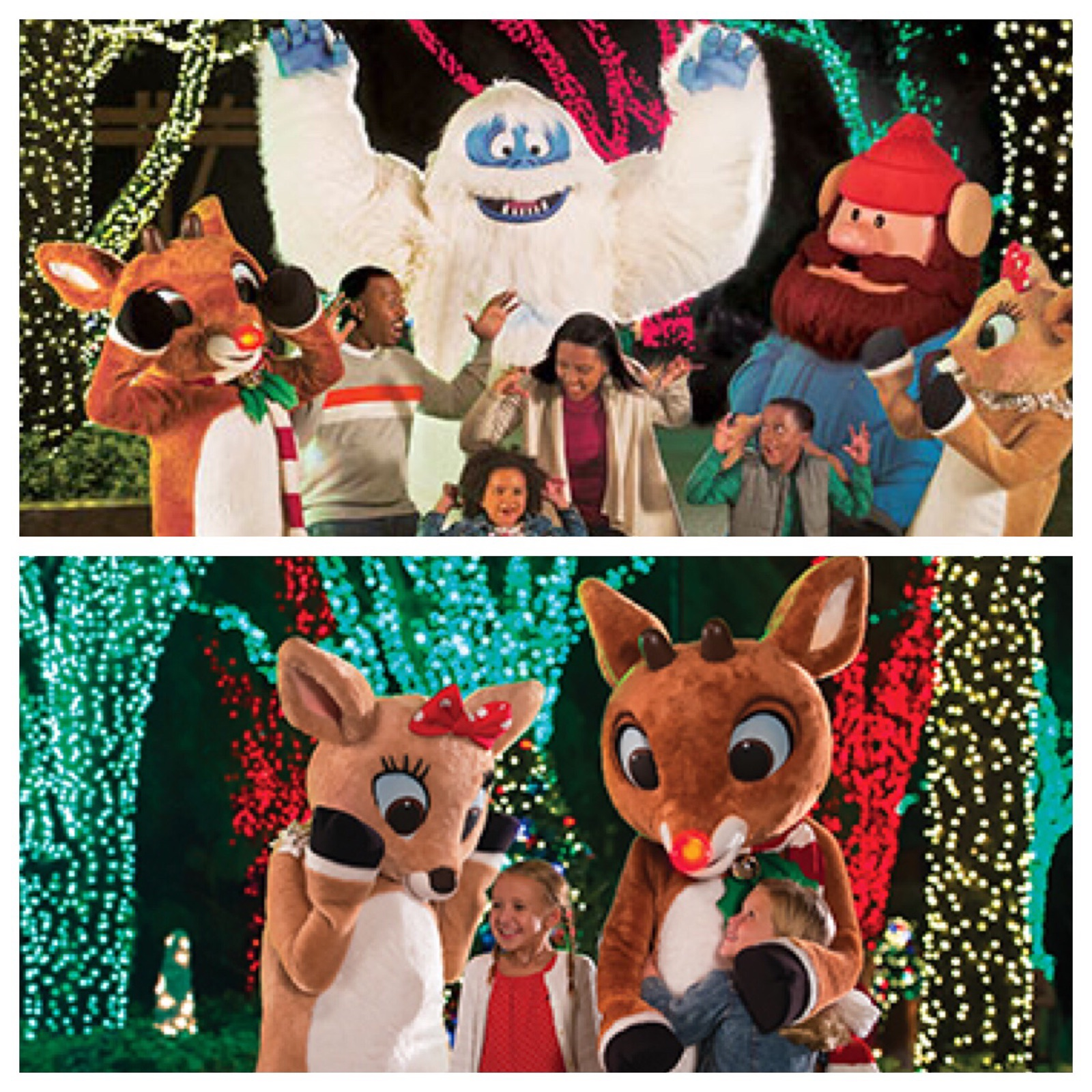 Christmas at SeaWorld: Meet udolph, Clarice, Bumble and Yukon Cornelius from the classic Christmas Rudolph, the Red Nosed Reindeer television special.