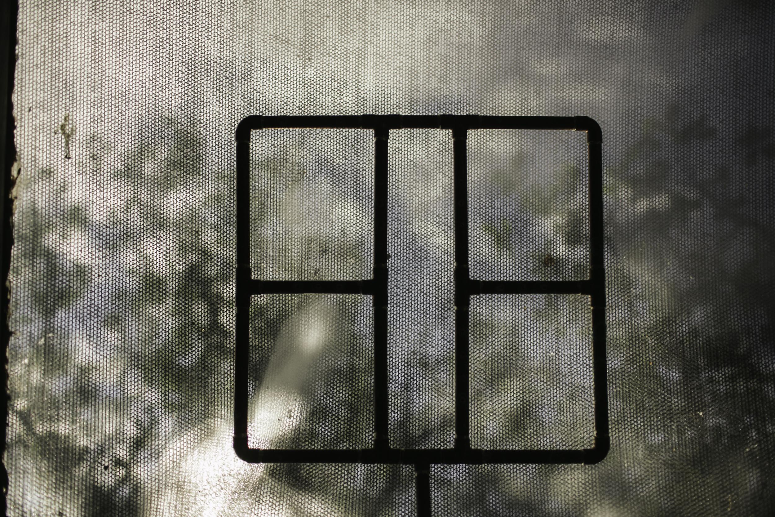 hayfork-93.jpg
