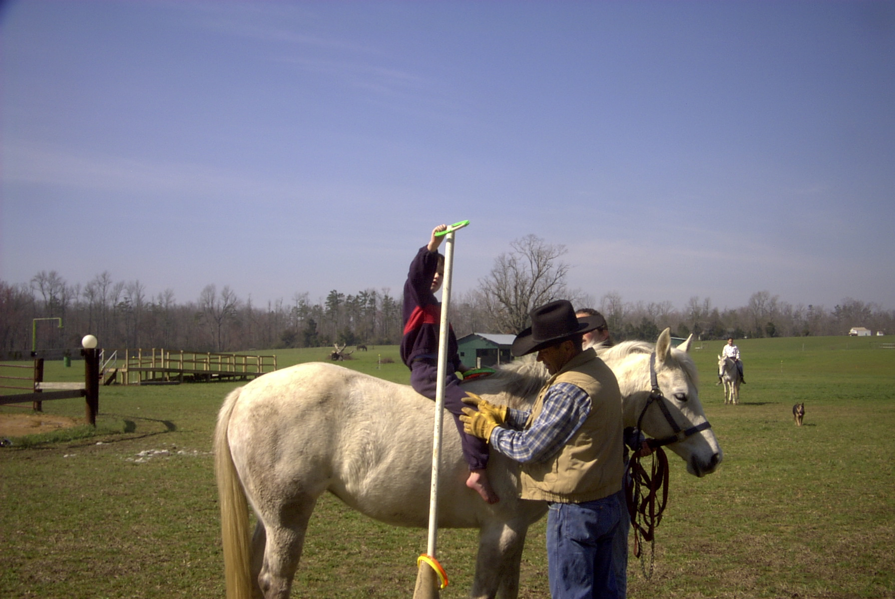Horse Farm 9.jpg