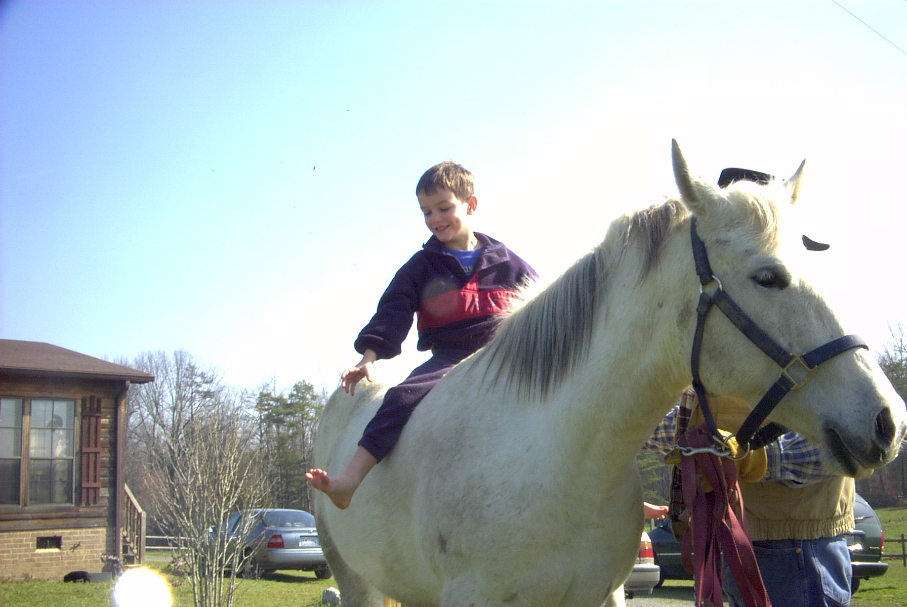 Horse Farm 5.jpg