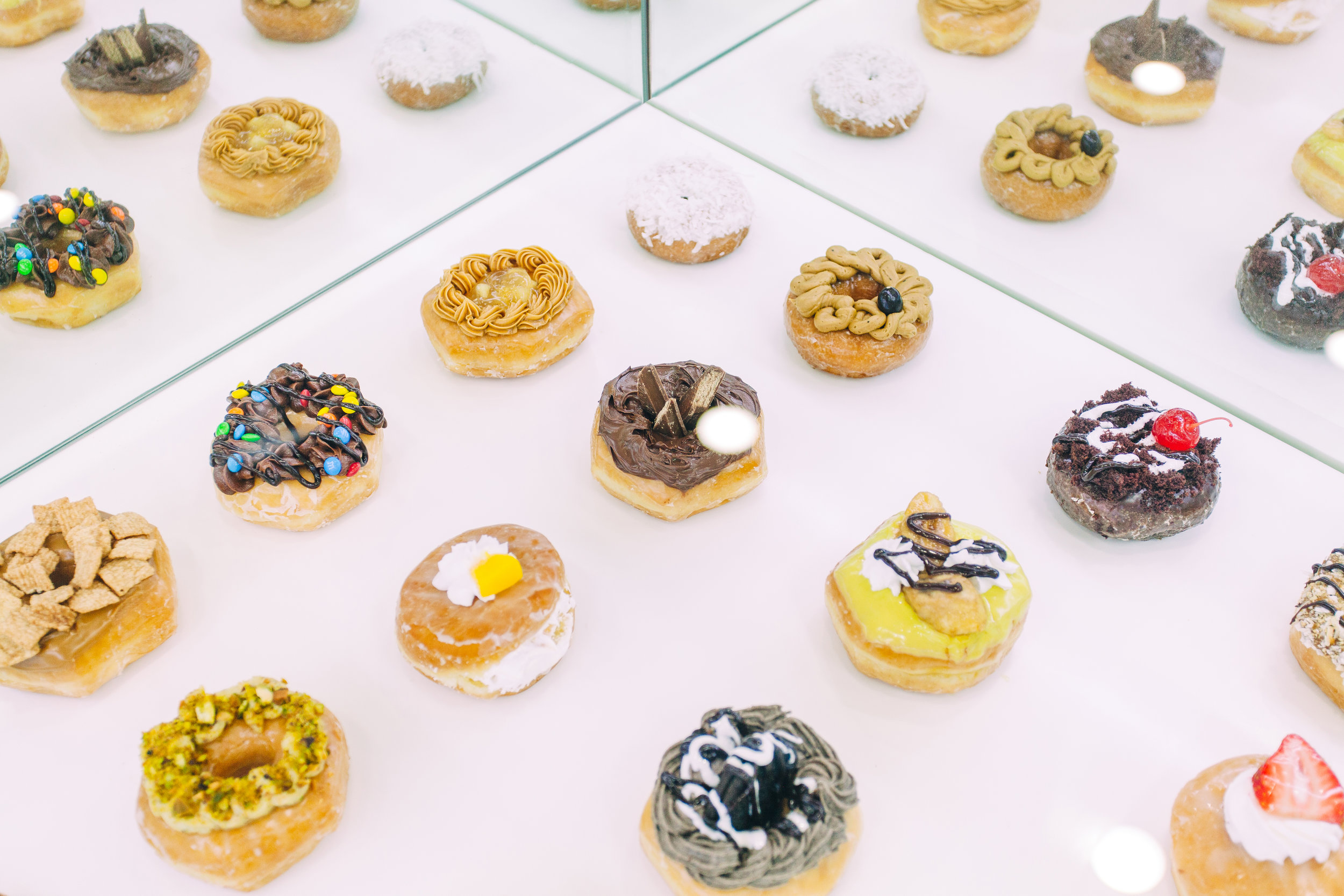 donut case 1.jpg