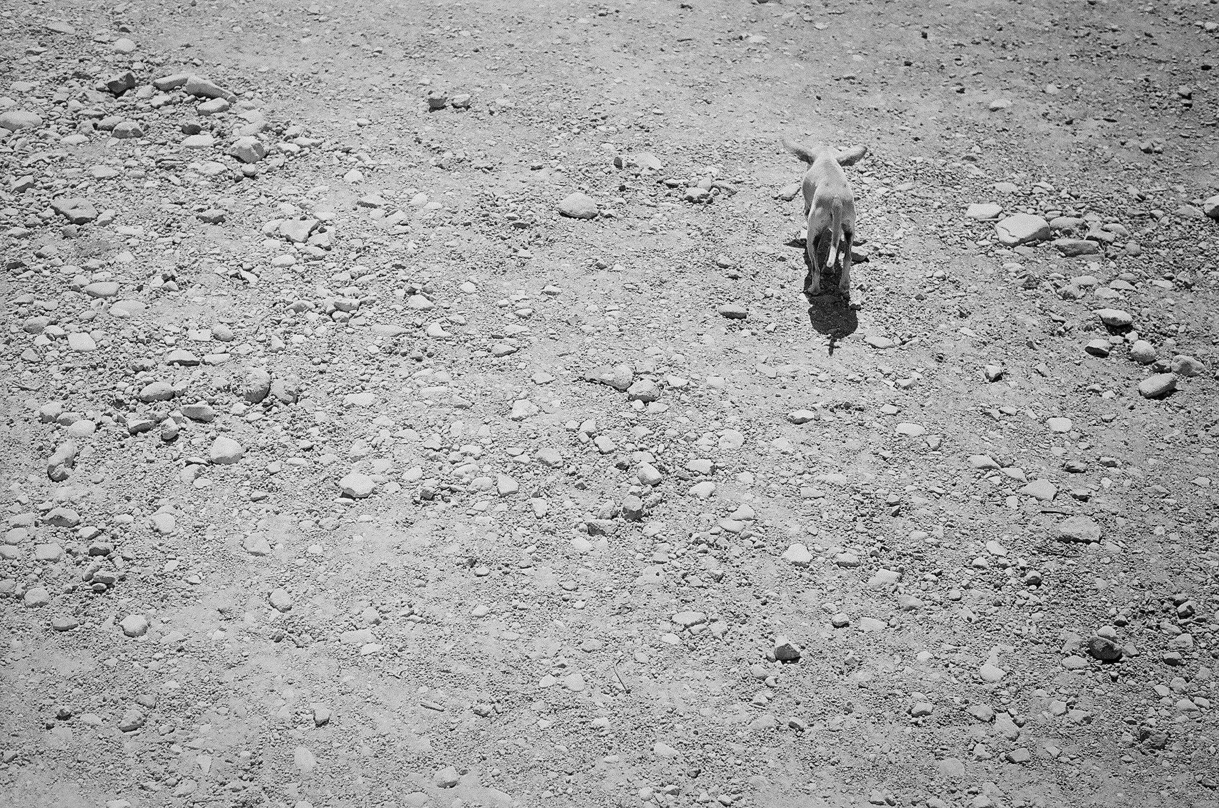 Cerca del Río_Boquillas del Carmen_2016_Katrina Jane Perry-13.jpg