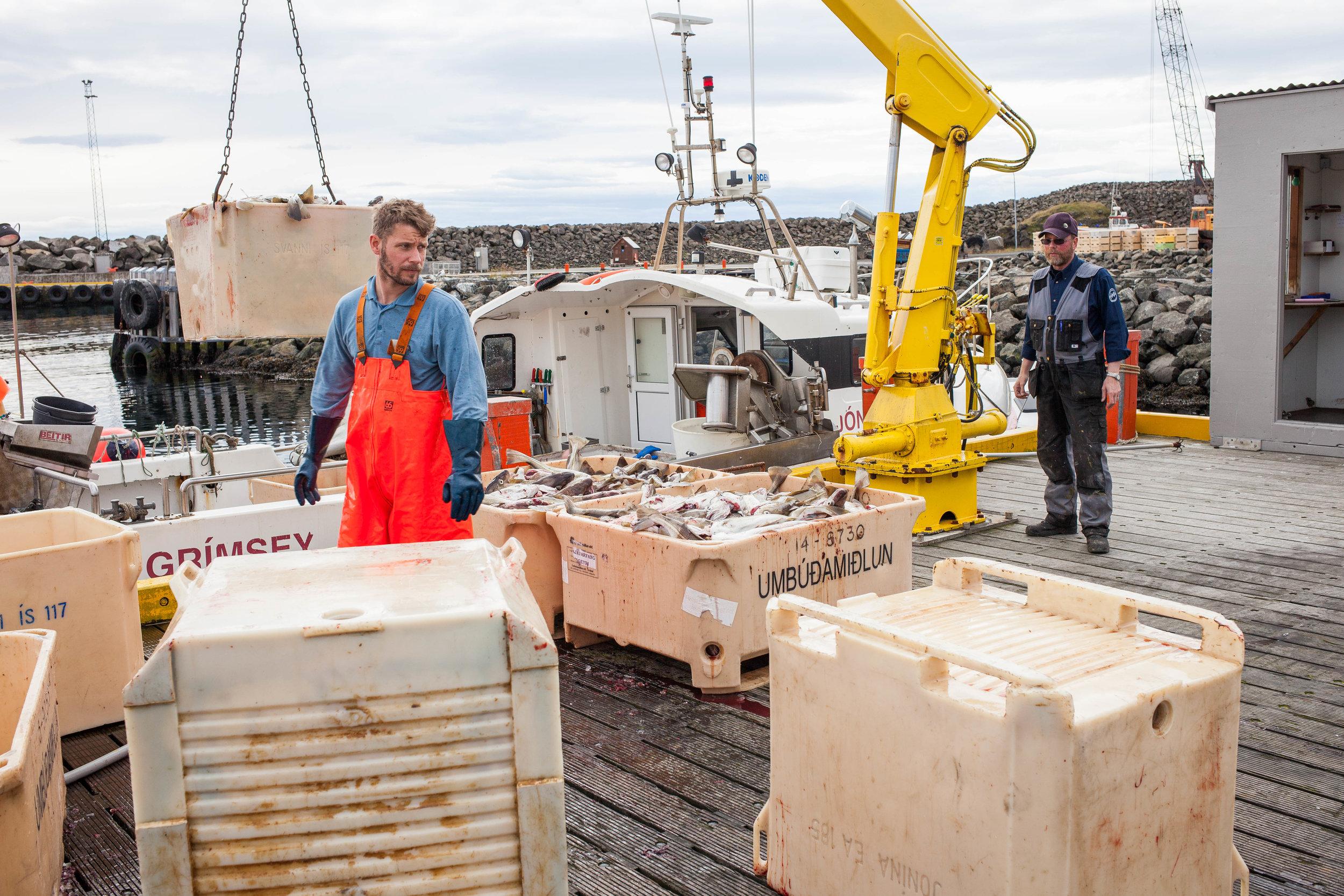 Grimsey Fishing pt. 2 WEB_2016_Katrina Jane Perry-2150.jpg